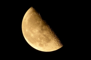 下弦の月1.jpg